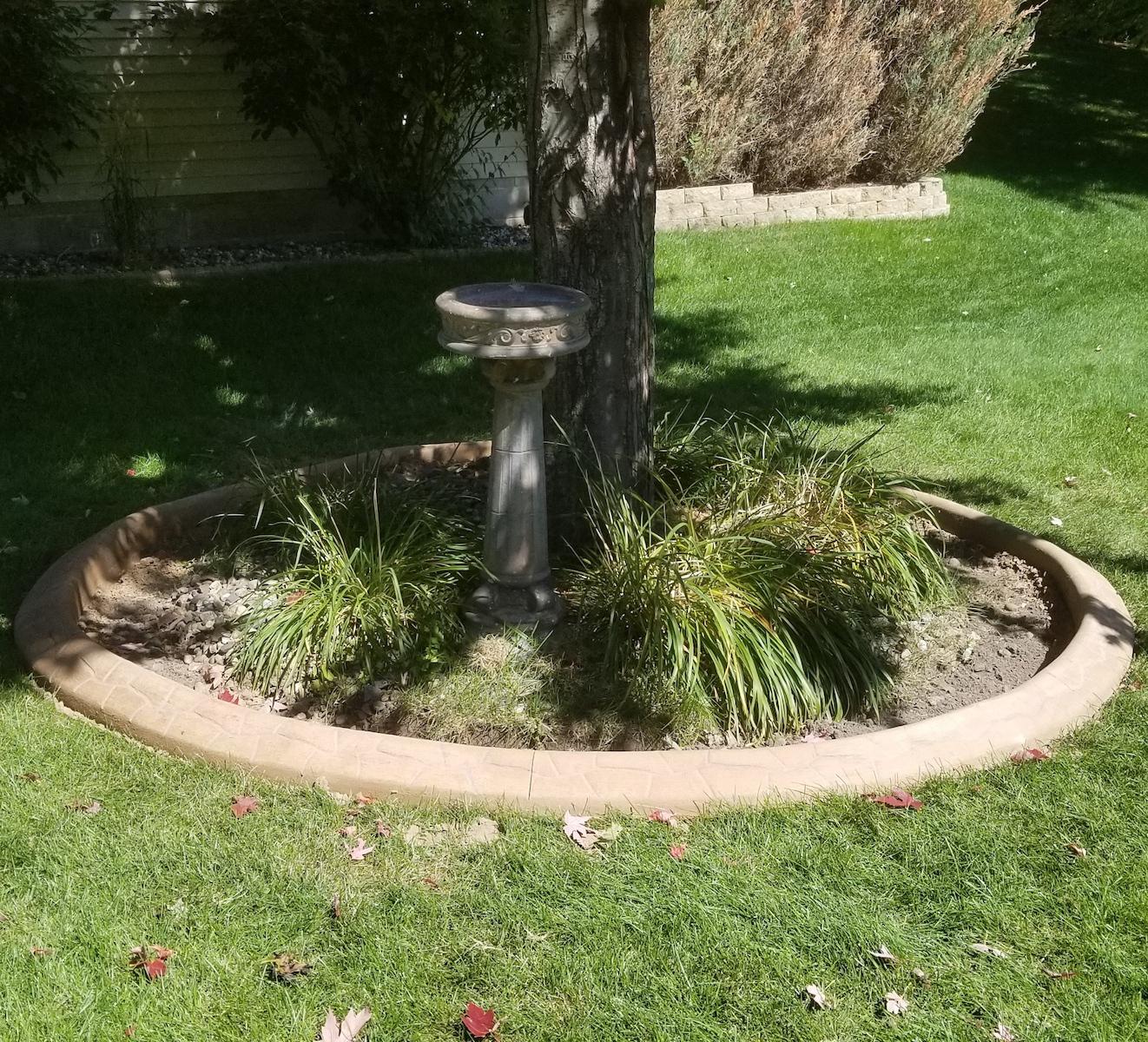 tree circle curbing
